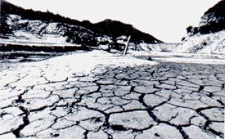 福岡 市 ダム 貯水 率